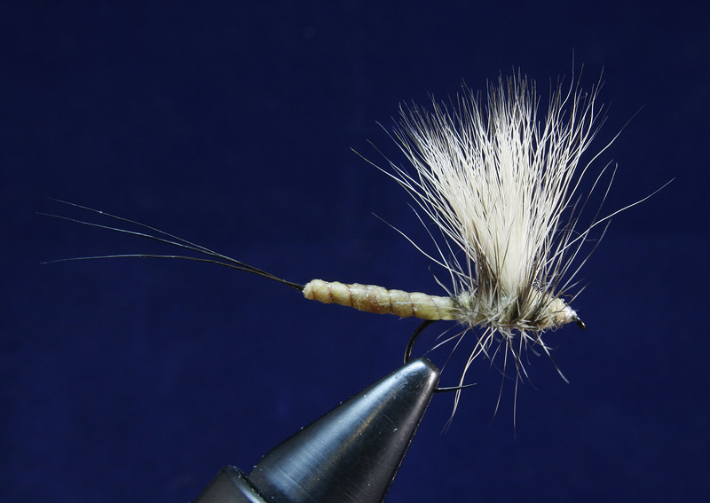 Danica Mayfly step 5