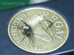 Jig Sedge Larva 03